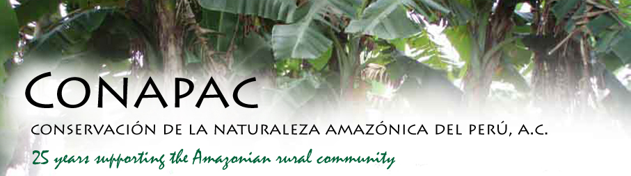 CONAPAC 23 years supporting the Amazonian rural community