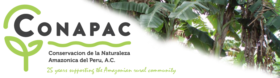 CONAPAC 25 years supporting the Amazonian rural community